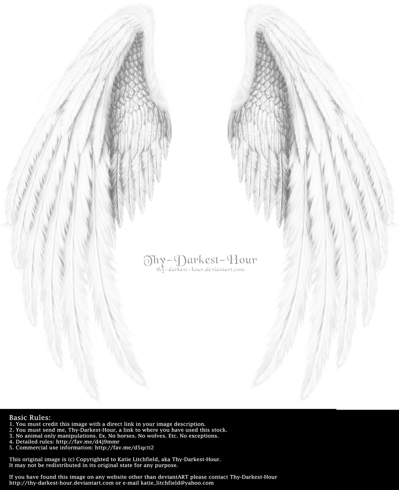 Winged Fantasy V.2 - White by Thy-Darkest-Hour
