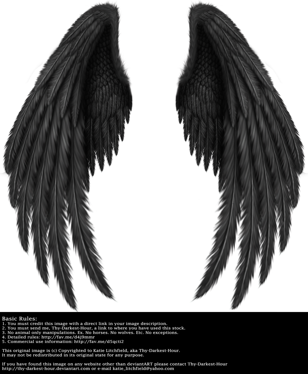 Realistic angel wing drawings the image for Black and white only