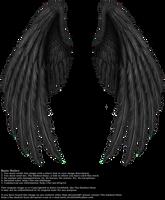 Winged Fantasy V.2 - Black by Thy-Darkest-Hour