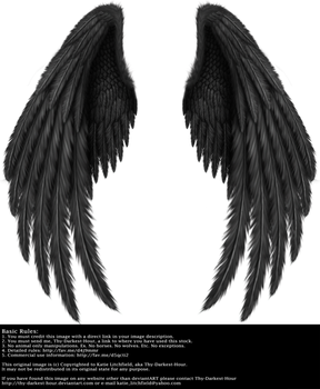 Winged Fantasy V.2 - Black