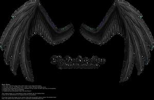 Fiction Wings - Black