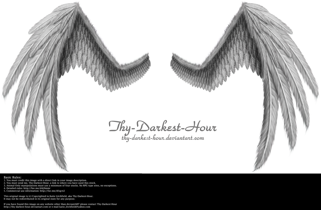 Fiction Wings - Silver by Thy-Darkest-Hour
