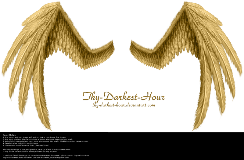 Fiction Wings - Golden by Thy-Darkest-Hour