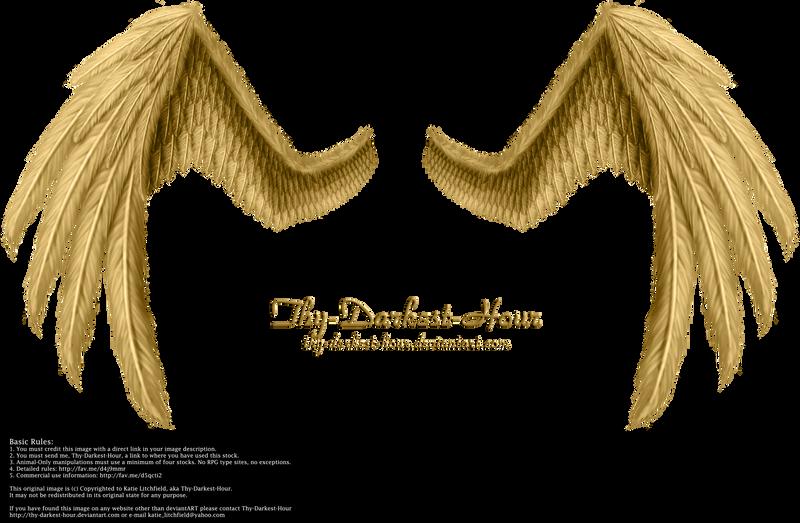 Fiction Wings - Golden by Thy-Darkest-Hour