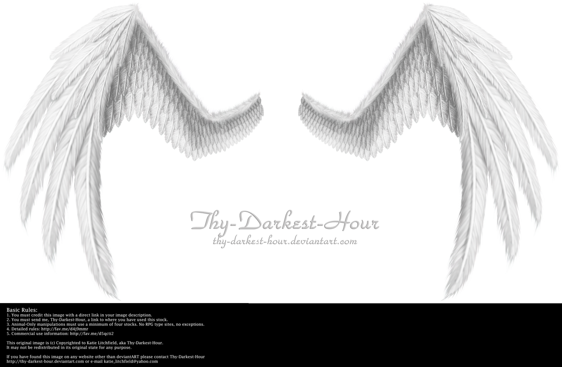 Fiction Wings - White by Thy-Darkest-Hour