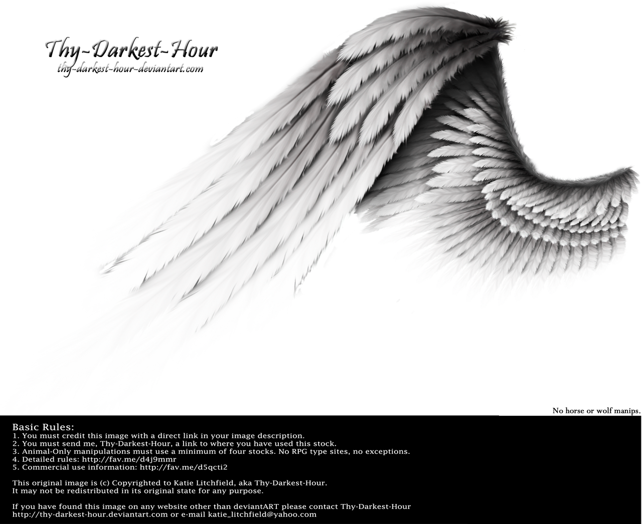 Contrast Wing - Silver by Thy-Darkest-Hour