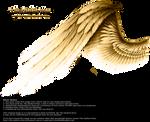 Contrast Wing - Golden