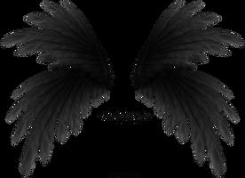 Frilled Wings - Black by Thy-Darkest-Hour