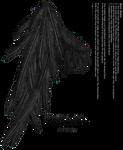 Draped Wing - Black