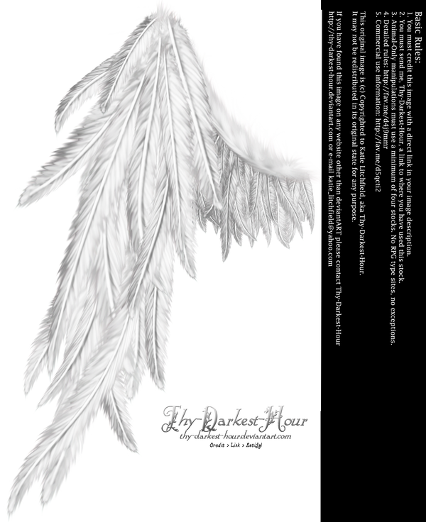 Draped Wing - White by Thy-Darkest-Hour