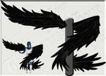 Wrap-Around Wings - Black