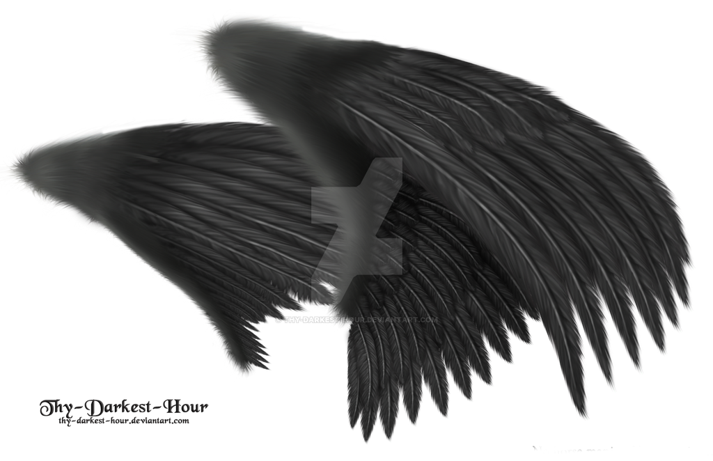 Dual Black Wings - LARGE PSD by Thy-Darkest-Hour