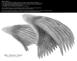 Dual Wings Silver - Med. PNG