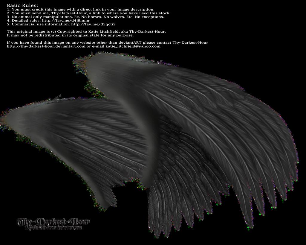 Dual Wings Black - Med. PNG by Thy-Darkest-Hour