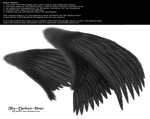 Dual Wings Black - Med. PNG