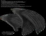 Dual Wings Black - Med. PNG