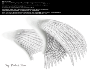 Dual Wings White - Med. PNG by Thy-Darkest-Hour