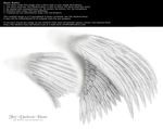 Dual Wings White - Med. PNG