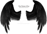 Winged Fantasy Black-Gray - Premium PSD Download