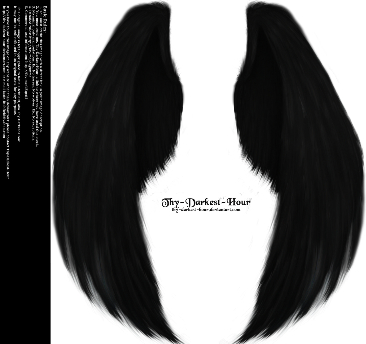 Furred Feathered Wings- Black PNG by Thy-Darkest-Hour