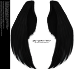 Furred Feathered Wings- Black PNG