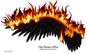 Wings on Fire - Black 02 by Thy-Darkest-Hour