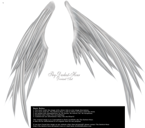 Wings of Madness PNG - Silver