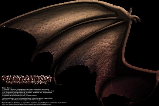 Dragon Wings 02