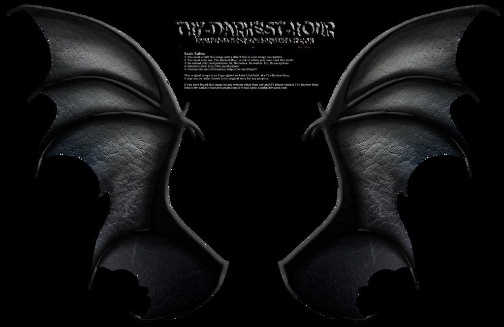 Dragon Wings 01 by Thy-Darkest-Hour