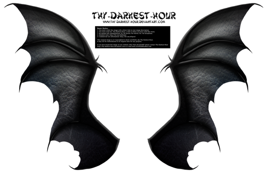 Dragon Wings 01