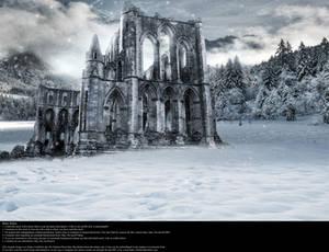 Ruins of Winter