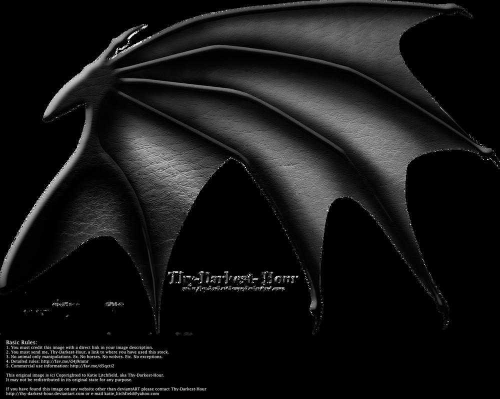 Dragon Wings 03 by Thy-Darkest-Hour