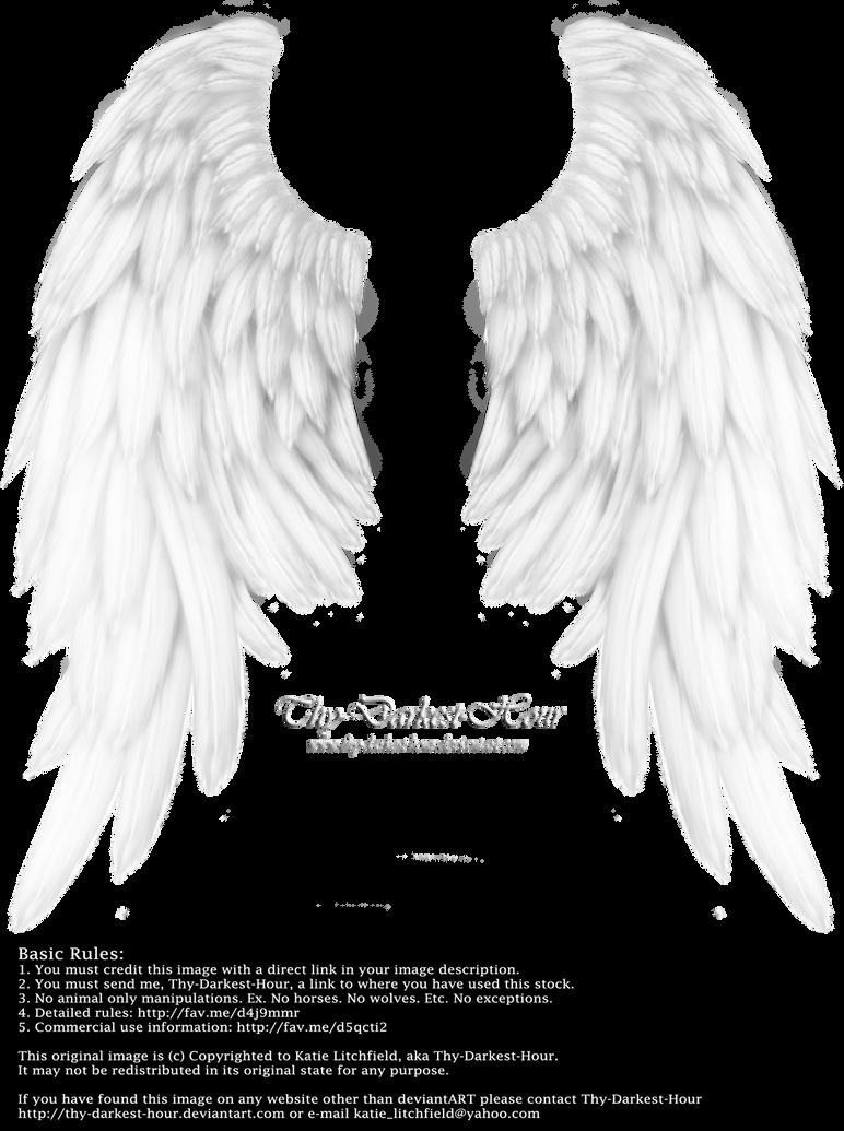 Daydream Wings - White by Thy-Darkest-Hour
