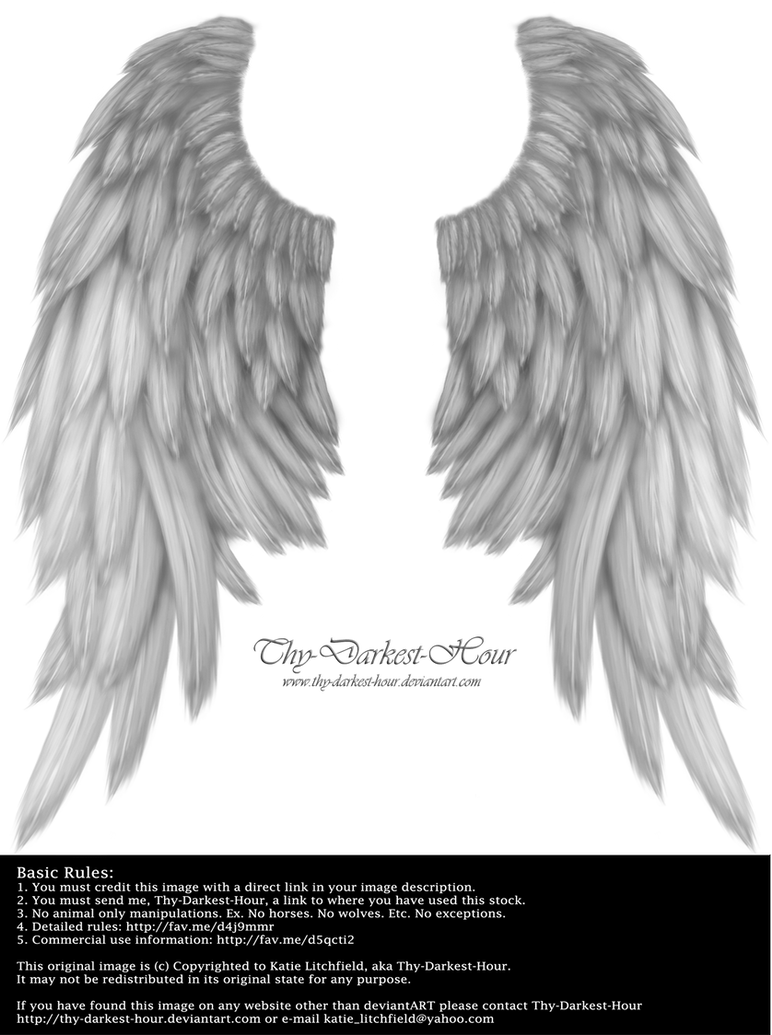 Daydream Wings - Silver by Thy-Darkest-Hour