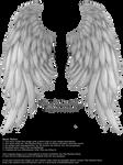 Daydream Wings - Silver