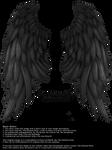 Daydream Wings - Black by Thy-Darkest-Hour