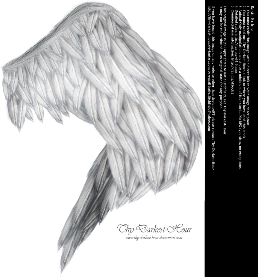 Wings of Fancy - Silver by Thy-Darkest-Hour