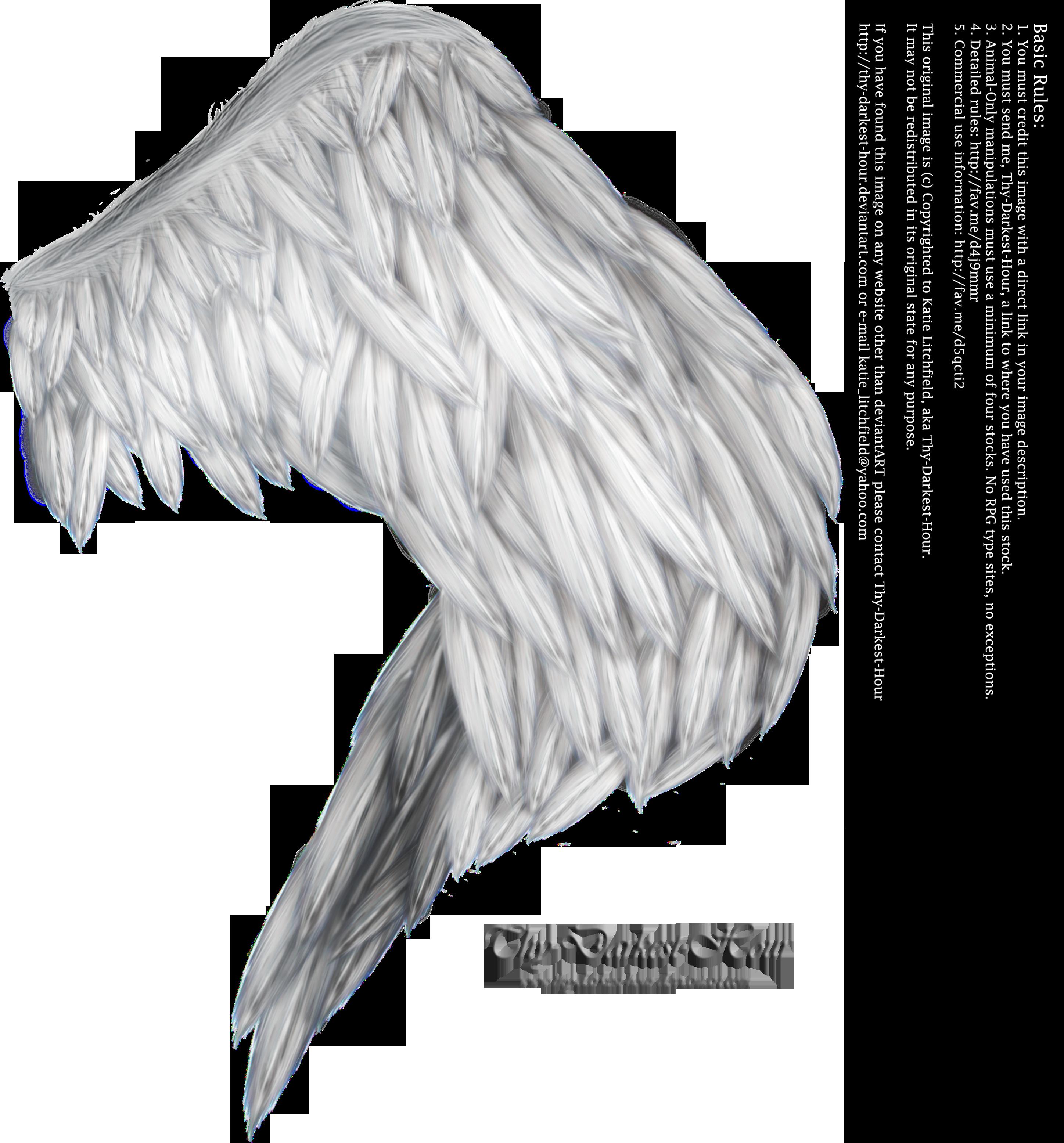 Wings of Fancy - Silver by Thy-Darkest-Hour