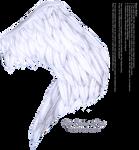 Wings of Fancy - White