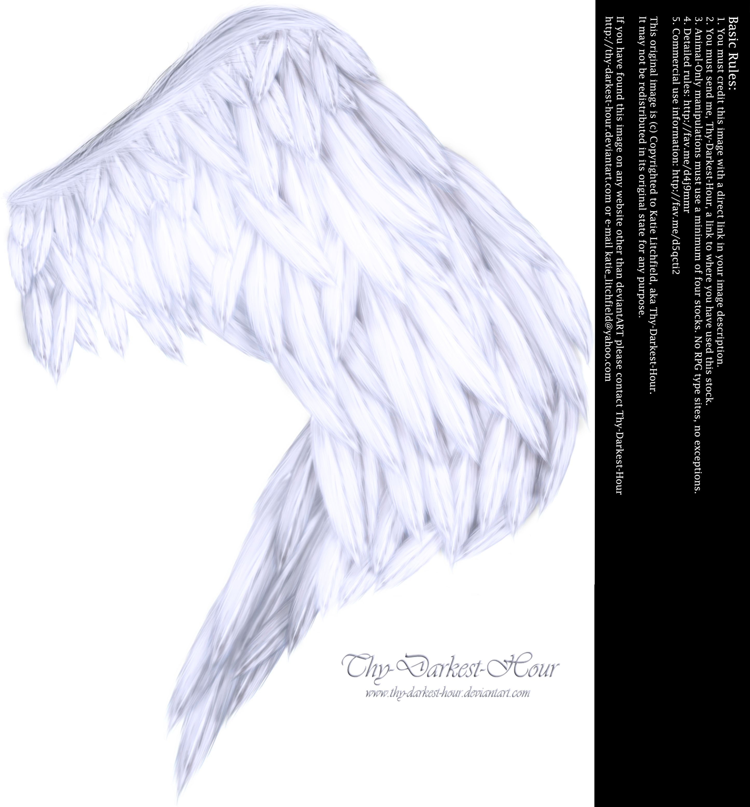 Wings of Fancy - White by Thy-Darkest-Hour