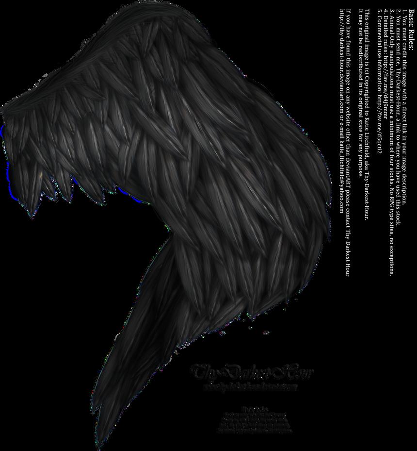 Wings of Fancy - Black by Thy-Darkest-Hour