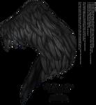 Wings of Fancy - Black
