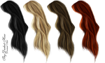 Hair PNG's 5