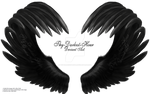 Airbrushed Wings 02