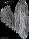 Fluffed Wings 01 - Silver by Thy-Darkest-Hour