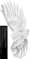 Dual Upright Wing -White
