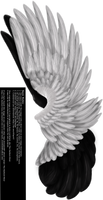 Dual Upright Wing - White-Black