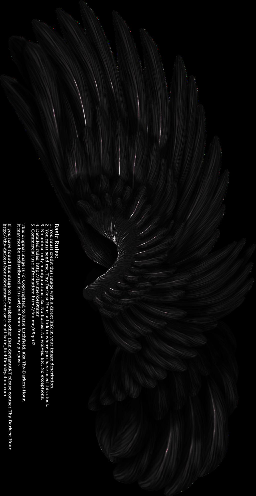 Dual Upright Wing - Black