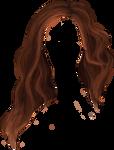 Hair PNG 09