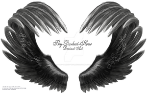 Airbrushed Wings - Silver 01